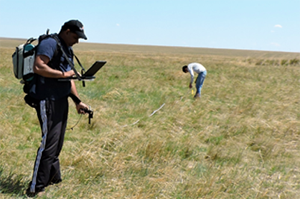 Researchers take measurements in the Mongolian grassland